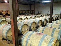 〜後編〜 シャトー・ラ・ジョンカード のワイン造りに迫れ!2