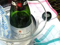 スパークリングワイン デュック・ダンリ