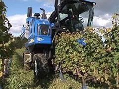 自動収穫機