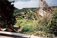 陡坡的斜面