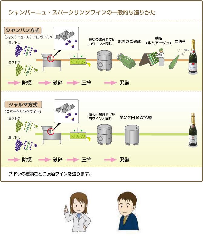 シャンパーニュ・スパークリングワインの一般的な造り方
